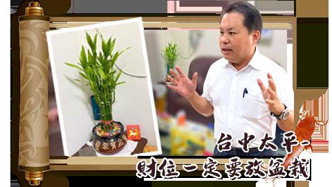 台中太平-財位一定要放盆栽---張定瑋老師
