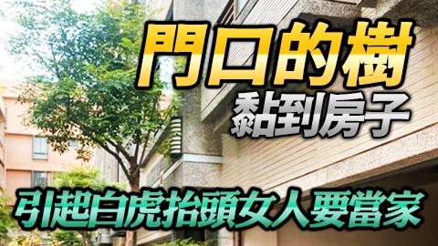 高雄鳳山-門口的樹黏到房子引起白虎抬頭女人要當家---張定瑋老師風水勘嶼