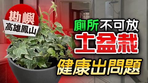 高雄鳳山-廁所不可放土盆栽健康出問題---張定瑋老師風水勘嶼