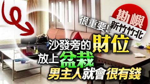 新竹竹北-沙發旁的財位很重要放上盆栽男主人就會很有錢---張定瑋老師風水勘嶼