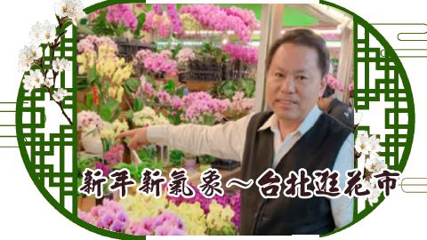 新年新氣象~台北逛花市