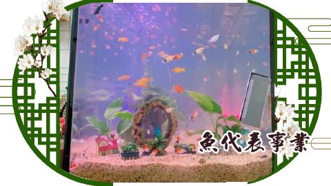 魚代表事業